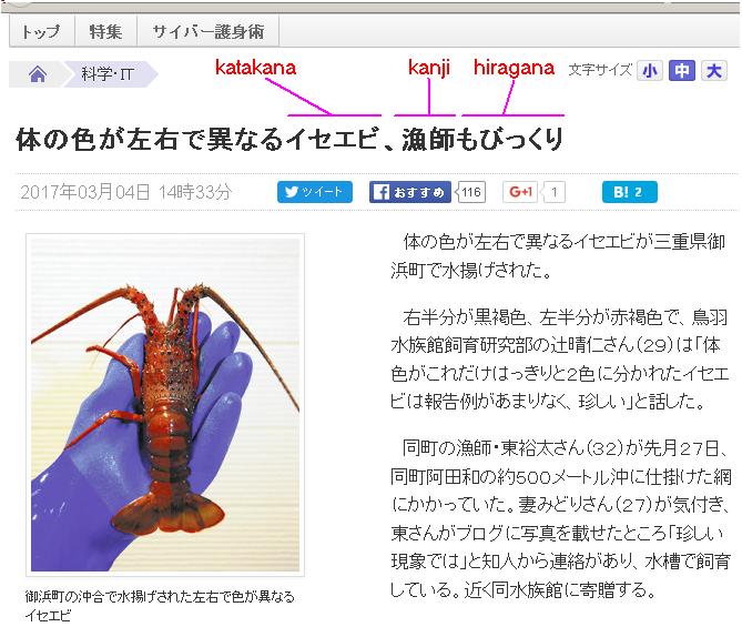 yomuri_online