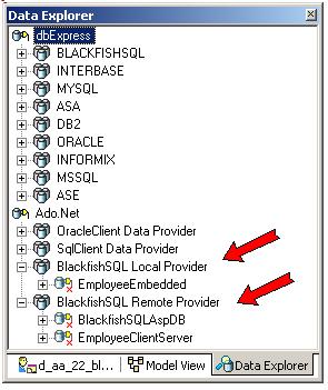 blackfish_ado_net_providers